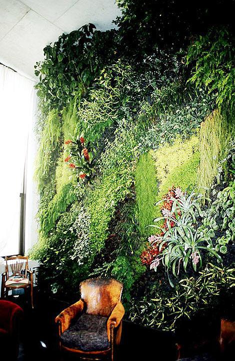 puutarha kodin seinä