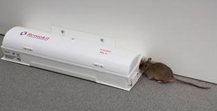 Rentokil RADAR - tekstiviestejä hiiriltä haudan takaa