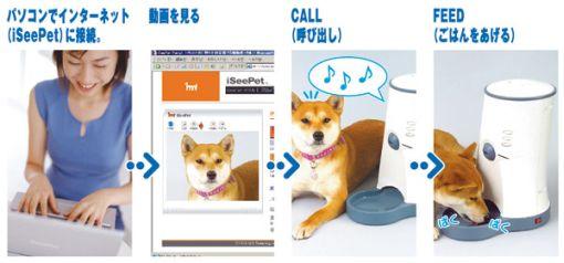 Kauko-ohjattu koiranruokakuppi webbikameralla