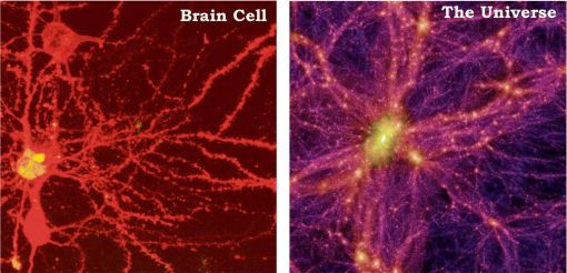 Aivosolu ja Universumi näyttävät ihan samalta
