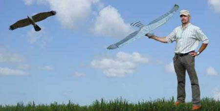 Robottihaukka Falco pitää linnut poissa lentokentältä