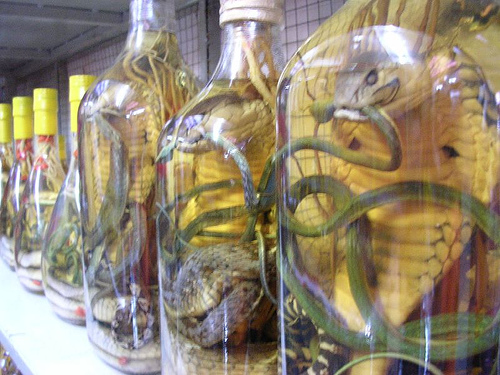 Käärmeviinaa Vietnamissa