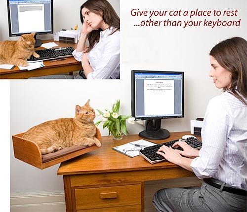 Kit-In Box, kissa laatikkoon ja pöydälle