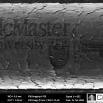 Hiukseen kaiverrettu McMaster Universityn logo