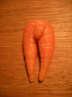 Anatoomisesti korrekti porkkana
