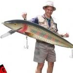 Puolitoistametrinen viehe suurehkojen kalojen nappaamiseen