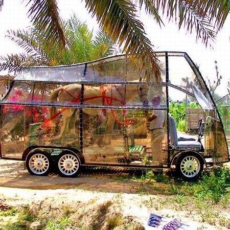 Naturmobil on yhden hevosvoiman auto