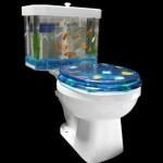 Fish 'n Flush on akvaarion ja vessanpöntön yhdistelmä