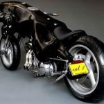 cat-bike2_mthbr_5784