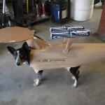Onko tässä naurettavin koiran asuste ikinä?