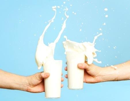 Maitoa on kahta tyyppiä, A1 ja A2. Onko tässä syy Suomen sydäntauteihin ja diabetekseen?