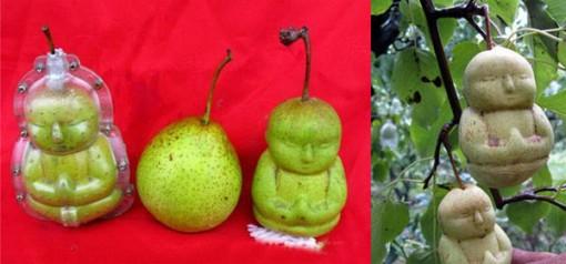 päärynä_buddha