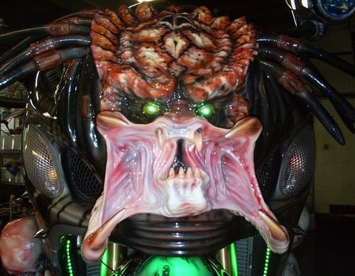 500x_predator2