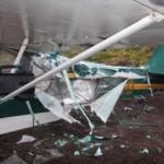 Karhu tuhosi miehen pienlentokoneen – mies korjasi ilmastointiteipillä ja lensi kotiin