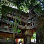 Maailman uskomattomimmat rakennukset: 10 kerroksinen puumaja