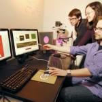 Tutkijat löysivät tavan manipuloida madon mieltä LCD-projektorilla