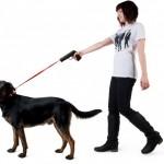 Povodokus on passiivis-aggressiivinen koirantalutushihna