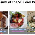 Uusi systeemi laskee kaloreita pelkästään ruoka-annosten kuvien perusteella