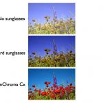 EnChroma Cx -linssit väittävät korjaavansa värisokeuden hetkellisesti