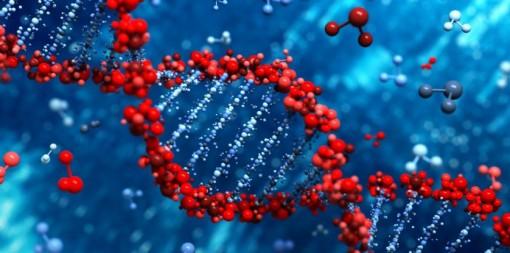 DNA-kaksoiskierre