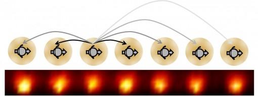 Kuvassa kaavio aikakristallin saavuttamisesta. Yksiulotteiset ketjutetut ytterbium-ionit käyttäytyvät kuten elektroni spinit ja tuottavat nuolten osoittamia pitkän ajan vaikutuksia ympärilleen