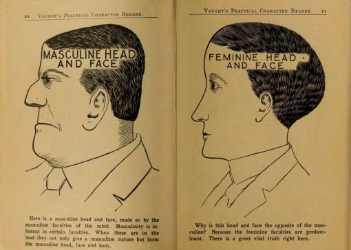 Feminiinisyys ja maskuliinisuus