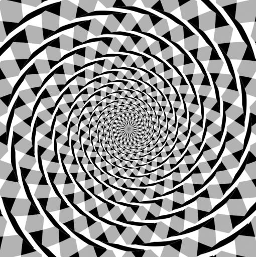 Fraserin spiraaliharha. Kuvassa näyttäisi olevan spiraali, mutta oikeasti siinä on sarja samankeskisiä ympyröitä.