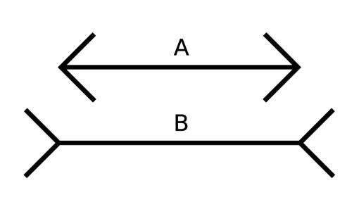 Müller-Lyerin illuusio. Janat ovat yhtä pitkät.