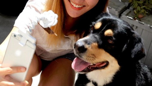 Flexy Paw -lemminkinkuvausapuväline -selfie
