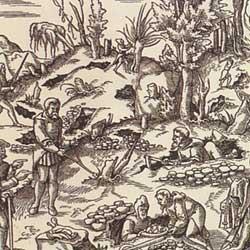 1500-luvun kaivosmiehet käyttävä pajunoksista tehtyjä varpuja malmin etsinnässä