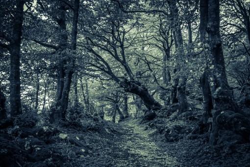 """""""Kummittelevista"""" paikoista on joskus löydetty infraääntä"""