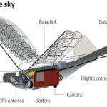 Kiina on julkistanut Dove-ohjelman, jossa vakoilusta huolehtivat lintu-robotit